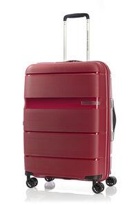 LINEX SPINNER 66/24 TSA  hi-res | American Tourister